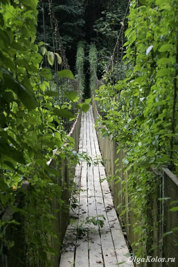 Мост в Таман Негара