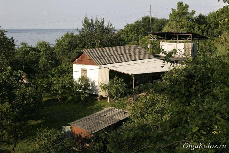 Наша деревня рядом с Новым Афоном