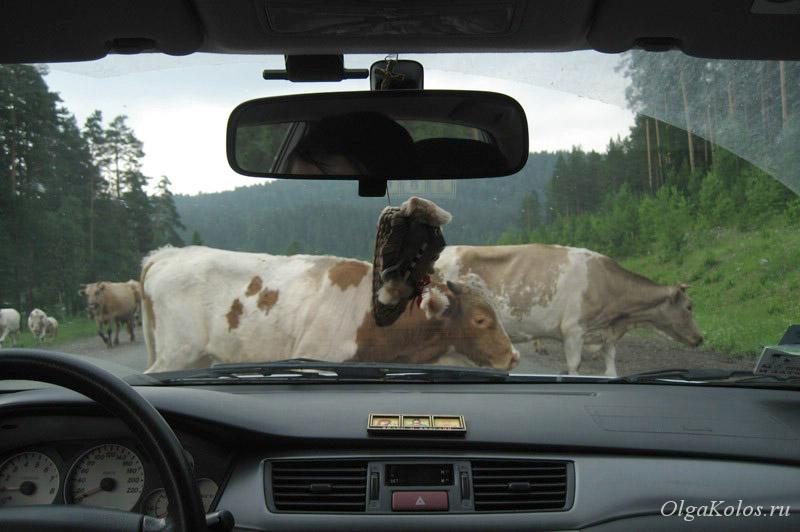 Дороги Башкирии, южный Урал