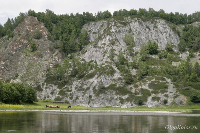 Сплав на катамаране по реке Белой, Башкирия, южный Урал