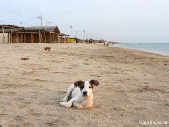 Пляж в Кабо де ла Вела