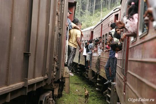 Поезд из Канди в Хапутале