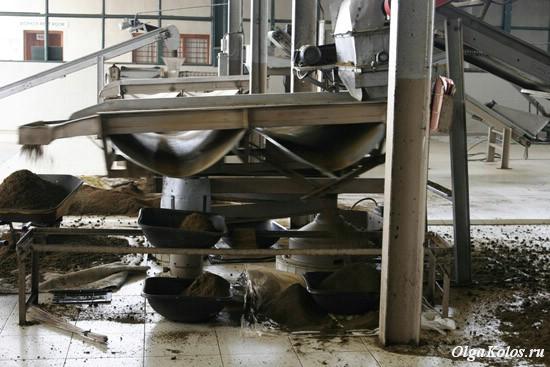 Чайная фабрика в Дамбатенне